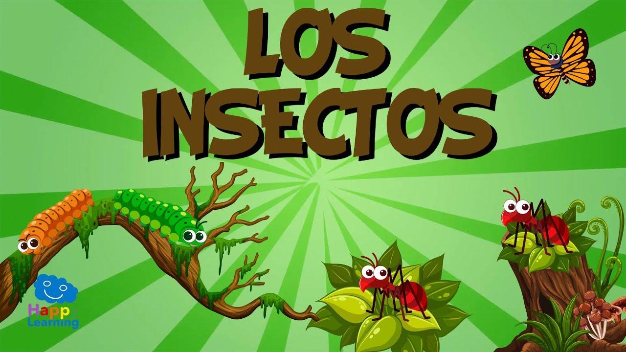 Los insectos v deos educativos para ni os youtube for Como eliminar los mosquitos del jardin