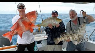 Fishing Video, Big Fish Kaos on the Great Barrier Reef!!