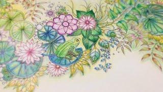 こんにちは! 今回はひみつの花園の、水辺とカエルのいるページを塗ってみました。 5~6時間かかりましたが、もっとサクサクぬれたような・・・...