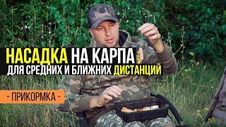 Вариант презентации насадки для ловли КАРПА на ближних и средних дистанциях
