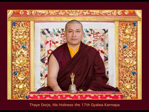 Translations | Karmapa's teaching on change, karma and COVID-19