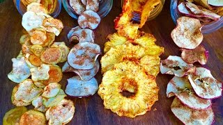 Healthy Snacks! (Dehydrated Fruit and Veg)