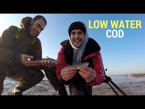 Fishing Brothers - Cod Fishing South Wales