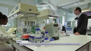Santé : un chercheur de l'INRA récompensé