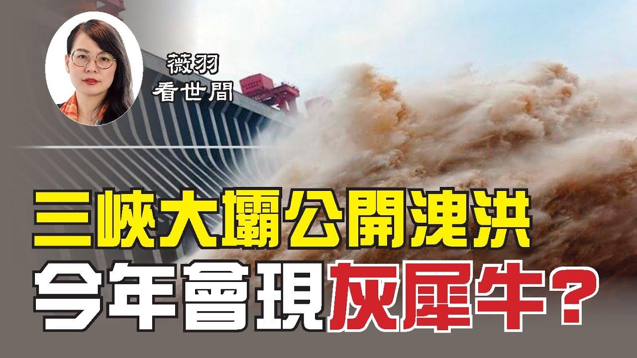 【第69期】中共官方今天承認三峽大壩今年首次洩洪,3.5萬立方米/秒的洩洪量對長江中下游意味著什麽?三峽工程會成為「灰犀牛」事件嗎?| 薇羽看世間 20200630(字幕)