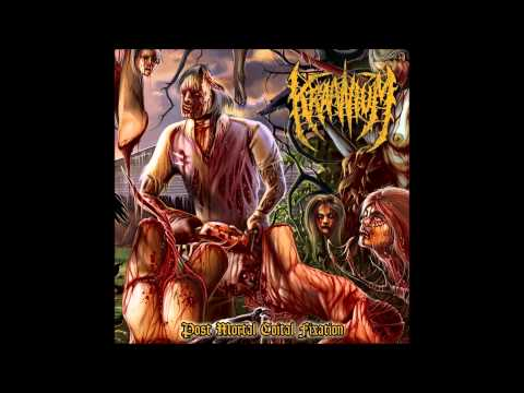 Kraanium - Post Mortal Coital Fixation (Full Album)