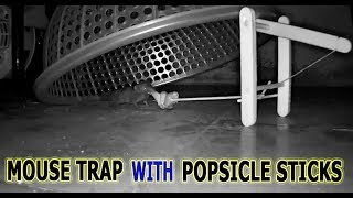 How to make Mouse Trap with Popsicle Sticks simple
