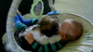 New puppy loves baby - so cute!