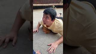 Try Not To Laugh  Funny Video *71 #Shorts
