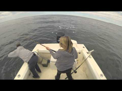 Barnstable Harbor May Stripers