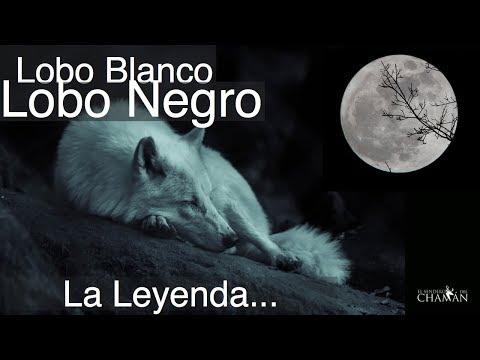La Leyenda del Lobo Blanco y el Lobo Negro