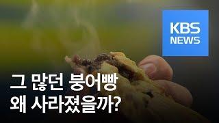 붕어빵 노점상 줄어든 이유는? / KBS뉴스(News)