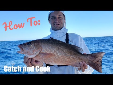 How To Catch MONSTER Snapper On Florida Keys Patch Reefs | Catch And Cook