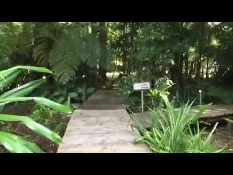 Lost Paradise Luxury Private Stay, Mission Beach, North Queensland
