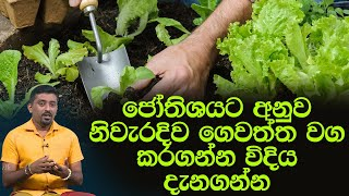 ජෝතිශයට අනුව නිවැරදිව ගෙවත්ත වග කරගන්න විදිය දැනගන්න  | Piyum Vila | 17- 04 - 2020 | Si yatha TV Thumbnail