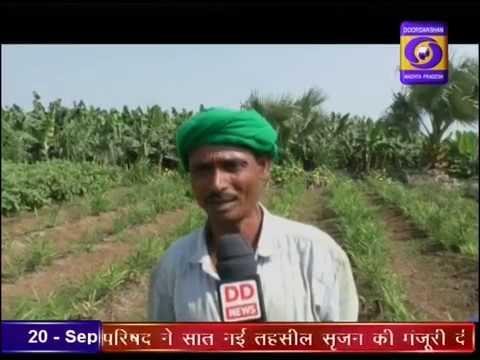 Ground Report Madhya Pradesh: Fasal Bima Yojana Barwani