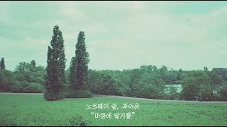 Youtube: 마음에 닿기를 / Norwegian Wood & Who R U