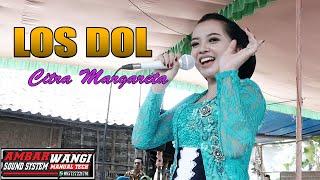 Los Dol Citra Margareta // CS. Ambarwangi Live Pogung // Dani Pro // Ambarwangi Audio