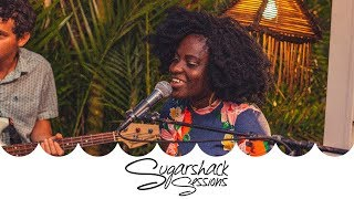 The Big Takeover - Rain Boots (Live Acoustic) | Sugarshack Sessions