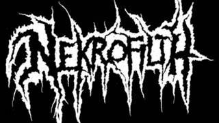Nekrofilth - Take Them To The Grave