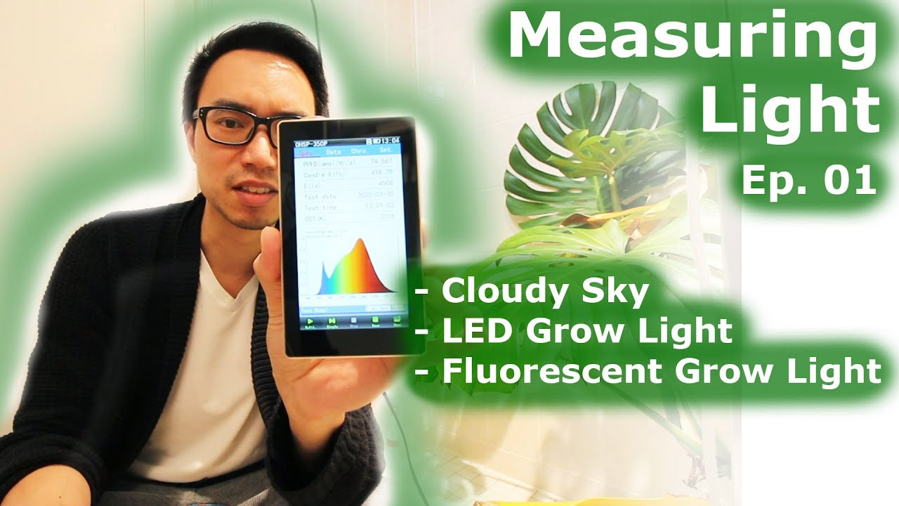 Measuring Light | Ep 01: Cloudy Day, LED vs Fluorescent Grow Lights, Spectral Analysis