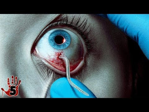 Top 5 Scariest Horror Movies You Need To Watch