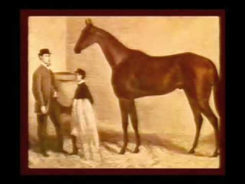 Melbourne Cup Late 1800s