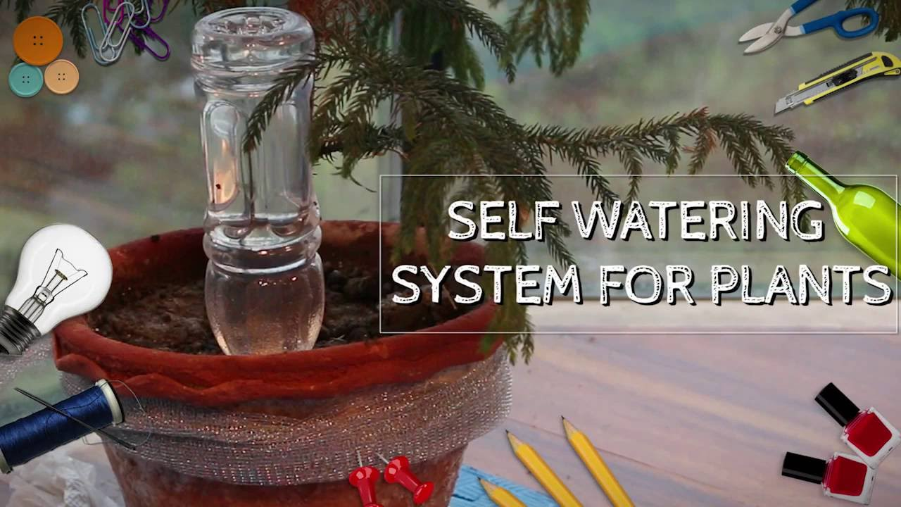 Simple automatic watering system