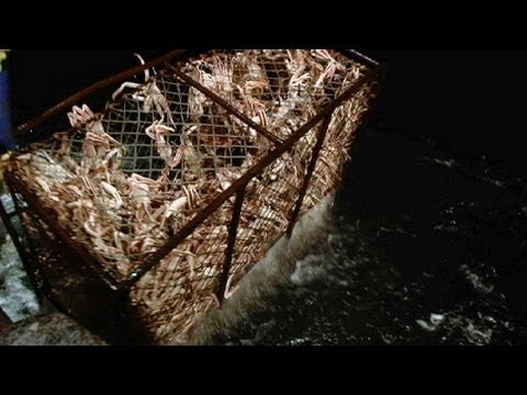 Crab Gamble - Deadliest Catch Ep 13 Sneak Peek