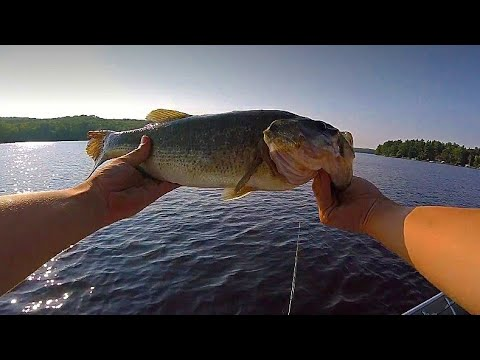 How To Fish Jigs For BIG BASS!--How To #4