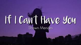 Shawn Mendes - If I Can