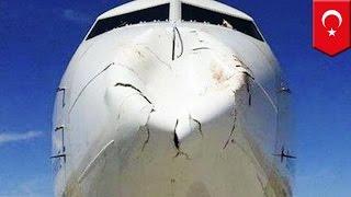 Airplane crashes into big fat bird: Turkish Airlines jet bird strike does damage - TomoNews