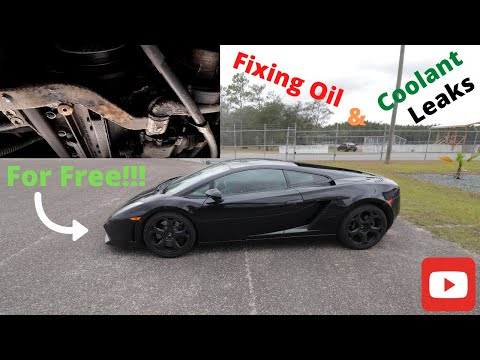 Lamborghini Gallardo Common oil and coolant leak Fix For Free!!!