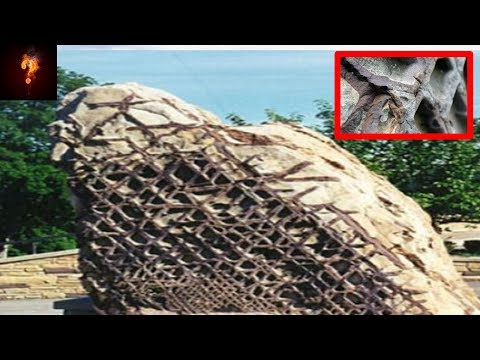 Waffle Rock ~ Fragment Of Ancient Alien Spaceship?