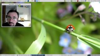Mageia 6 sta2... Vers le chant du cygne de la descendante de la Mandriva Linux ?