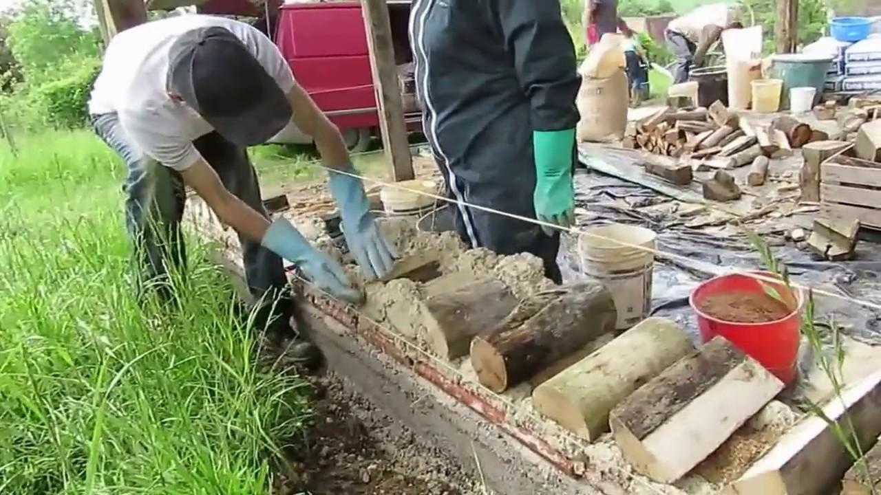 Construction cr ative en bois cord au verger for Construction en bois neuchatel