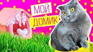РУМ ТУР | ROOM TOUR | МОЙ ДОМИК - МОИ ОБНОВКИ - КОШЕЧКА БАТТЕРС
