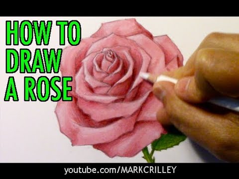 how-to-draw-a-rose-(and-add-color)