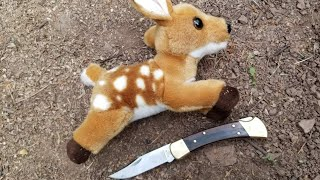 Catch and Cook Deer Fawn - How to Trap Deer with primitive snares