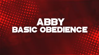 Fort Lauderdale Dog Training - The K9 Training Academy - Abby - Basic Obedience