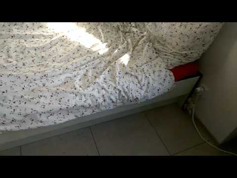University Dorm In Germany – Student Life Part 1