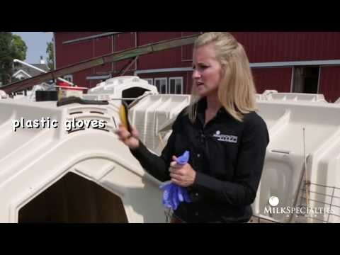 Calf Management Tips: Dehorning with Caustic Paste from YouTube · Duration:  3 minutes 59 seconds