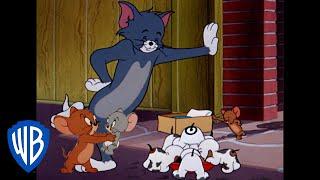 Том и Джерри Классический мультфильм 118 WB Kids