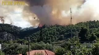 Лесной пожар в Каламосе