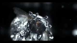 Start Video VKT GmbH Highspeed Trailer