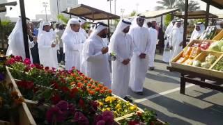 Mahaseel Festival at Katara