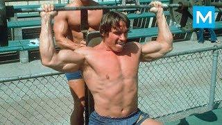 TERMINATOR is Back - Arnold Schwarzenegger | Muscle Madness
