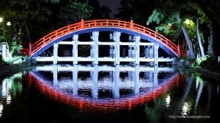 住吉大社 御本殿&反橋(太鼓橋)の夜景 (大阪市住吉区) Night View of ...