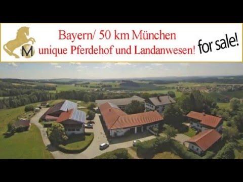 Reitanlage, Reitimmobilie, Bayern, Muenchen, equestrian property, Munich zu verkaufen