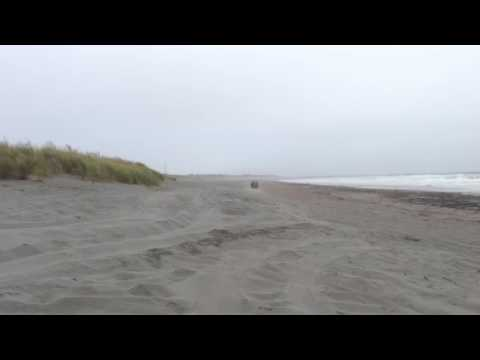 Cool duns Northern California coast